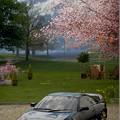 Photos: 1995 Toyota MR2