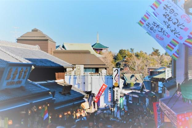 成田山新勝寺への道