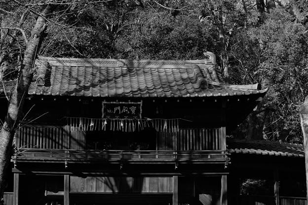 中山法華経寺(4)