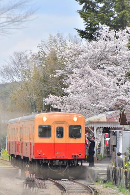 春の駅から