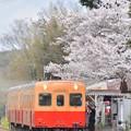 Photos: 春の駅から