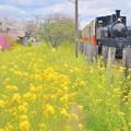 Photos: 高滝駅発車