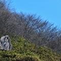 Photos: でかい石(そのまんまw)