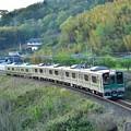 Photos: 南福島