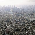 Photos: 東京スカイツリーから