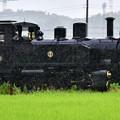 Photos: 雨の汽車