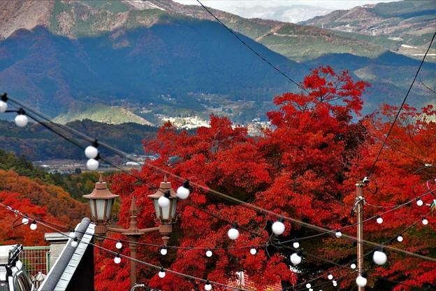 伊香保温泉の紅葉 2020 (5)
