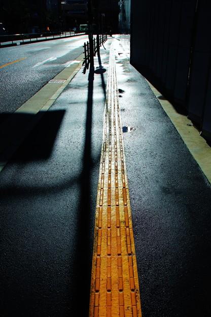 写真: 道程