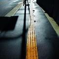 Photos: 道程