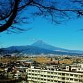 一月十日の富士山