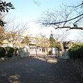 写真: 篠岡小学校_2