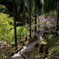 写真: 観音寺-2