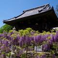 写真: 長泉寺