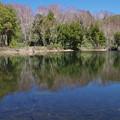 写真: 静かな湖畔