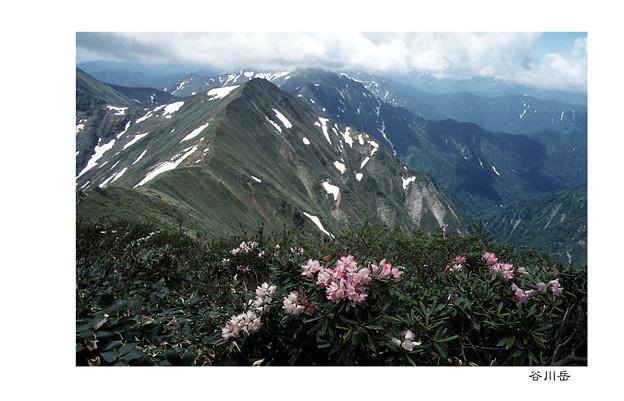 写真: 谷川岳