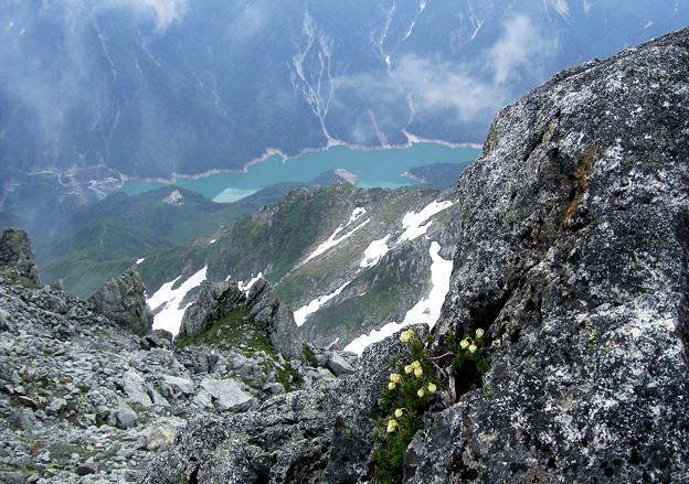 写真: 黒部湖を見下ろして・・
