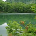 写真: 丸池 -2