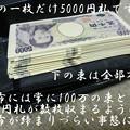 銭龜-10-