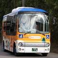 ごんぐるバス 亀有バス 亀崎・有脇線