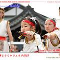 写真: Team Fortis!風舞菖蒲_大師よさこいフェスタ2008_24