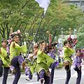 写真: 音鳴會_荒川よさこい-27