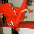 写真: ドリーム夜さ来いオフィシャルチーム_東京大マラソン祭り2008_25