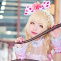 Photos: 杏