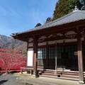 奥伊吹・長尾護国寺 (29)