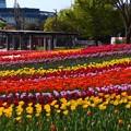 木曽三川公園 (4)