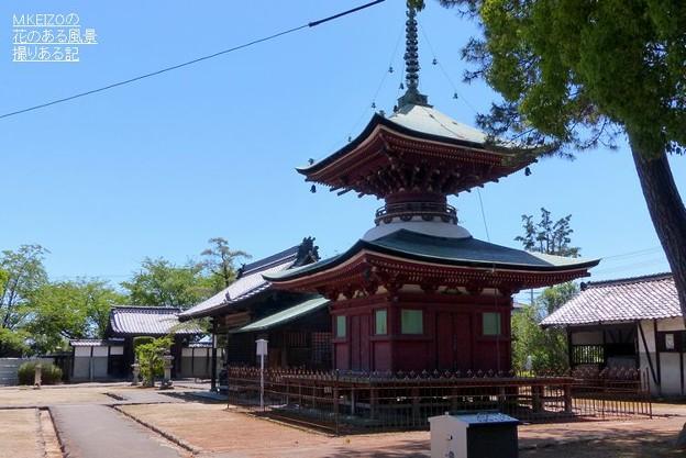 性海寺 (1)