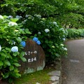 鶴舞公園 (3)