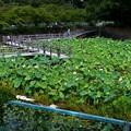 潮見坂平和公園 (2)