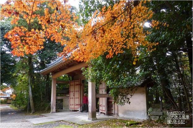 妙興寺 (7)