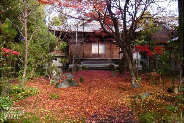 妙興寺 (9)