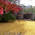 妙興寺 (54)