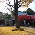 妙興寺 (53)