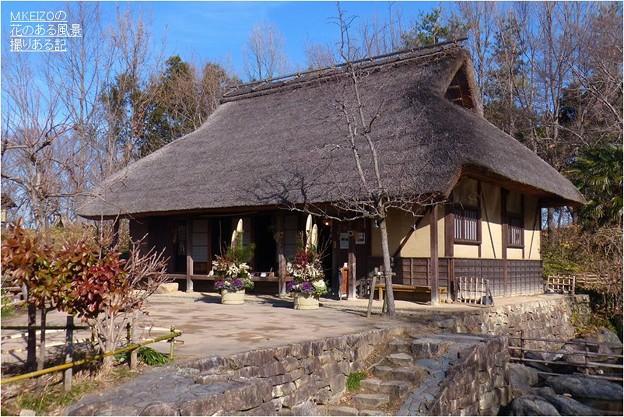 木曽川水園 (10)