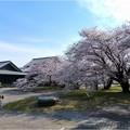 名古屋城界隈 (4)