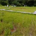 Photos: 吉賀池湿地 (2)