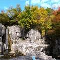 木曽川水園 (1)