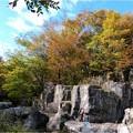 木曽川水園 (2)