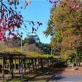 名城公園 (1)