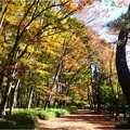 名城公園 (25)
