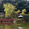 定光寺公園 (7)