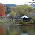 定光寺公園 (9)