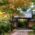 妙興寺 (2)