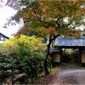 妙興寺 (3)