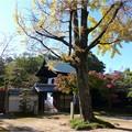 妙興寺 (25)