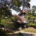 妙興寺 (26)