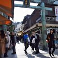 Photos: 青銅鳥居
